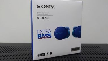 Sony WF-XB700 EXTRA BASS True Wireless Earbuds Headset/Headphones with Mic for Phone Call Bluetooth Technology